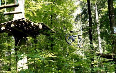 Bon plan sport : aurez-vous le courage de faire un parcours dans les arbres ?